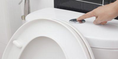 Best Quietest Flushing Toilet