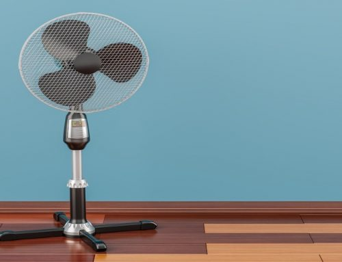 Top 5 Best Quietest Pedestal Fan: Reviews & Buyers Guide