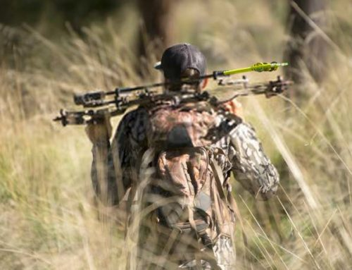 Top 5 quietest compound bow
